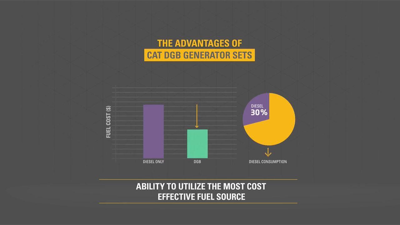 dual fuel engine video