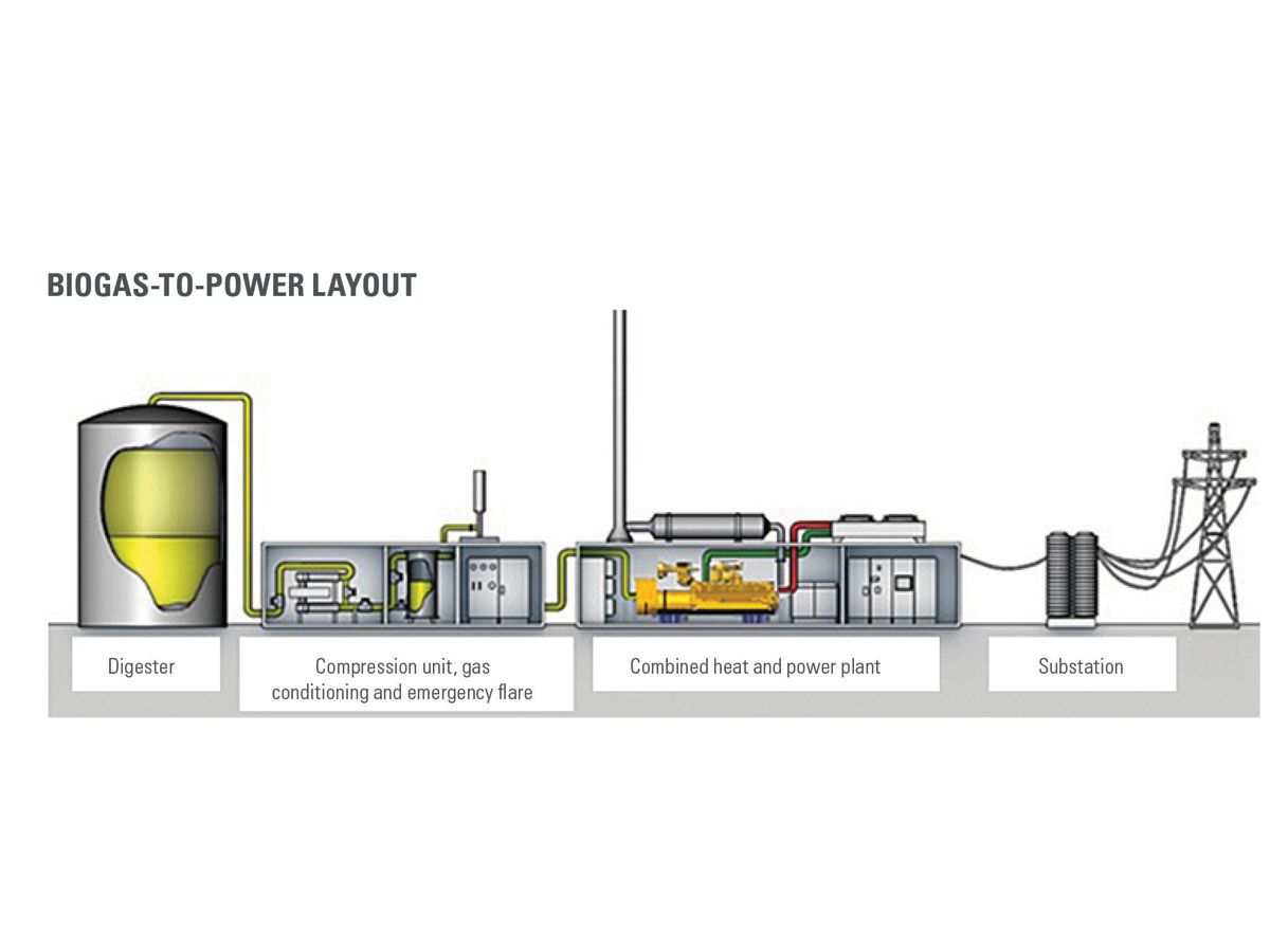 Figure 3: Typical biogas combined heat and power plant