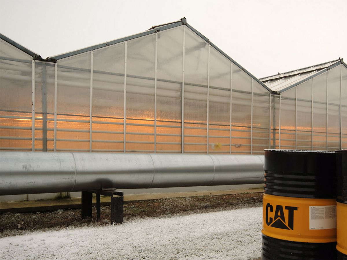 Because of the need for power to run the greenhouses as well as an increase in the prices of electric power, the greenhouse, needed an onsite power generation system to maximize growth of the vegetables.