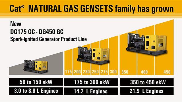 DG natural gas generator sets