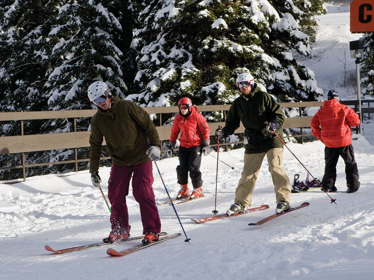 Snowbird Ski and Summer Resort has attracted skiers from around the world for nearly four decades