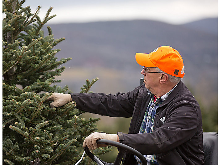 The tree farm is truly a family business, with other members, including their father Gary, involved. To know my family is part of other families' holiday traditions is incredible, says Ben.
