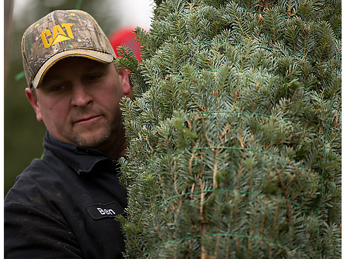 Seven years ago, the Voisines decided to diversify their business and purchased the Allagash View Christmas Tree Farm.