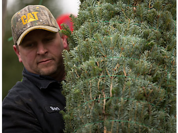 Voisine Christmas Tree Farm