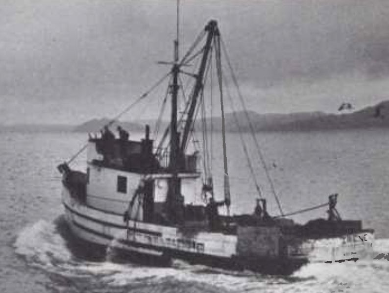 Working out of San Francisco, the halibut fishing boat Irene was powered by a Cat D337 (Series F) engine swinging a 53