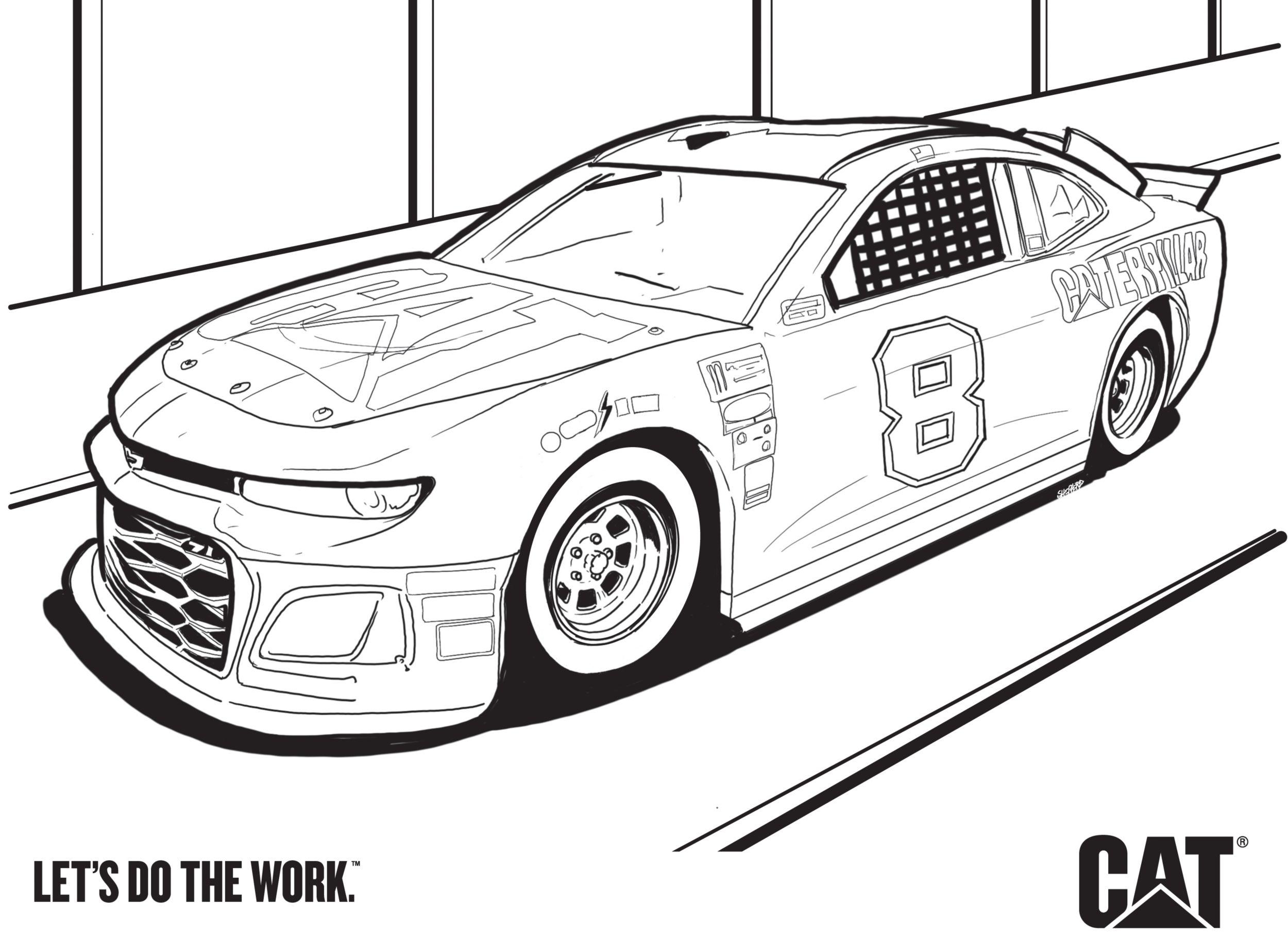 Cat NASCAR 8