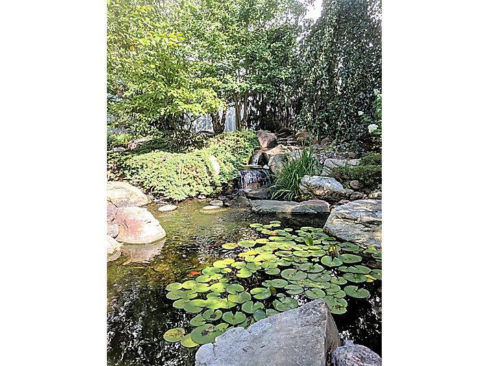 Aquascape's Aqua Gardens