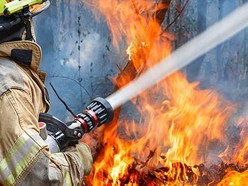 Bushfire Assistance