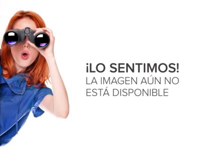 Smartphone Sony Xperia C3 Selfie Pro Entel