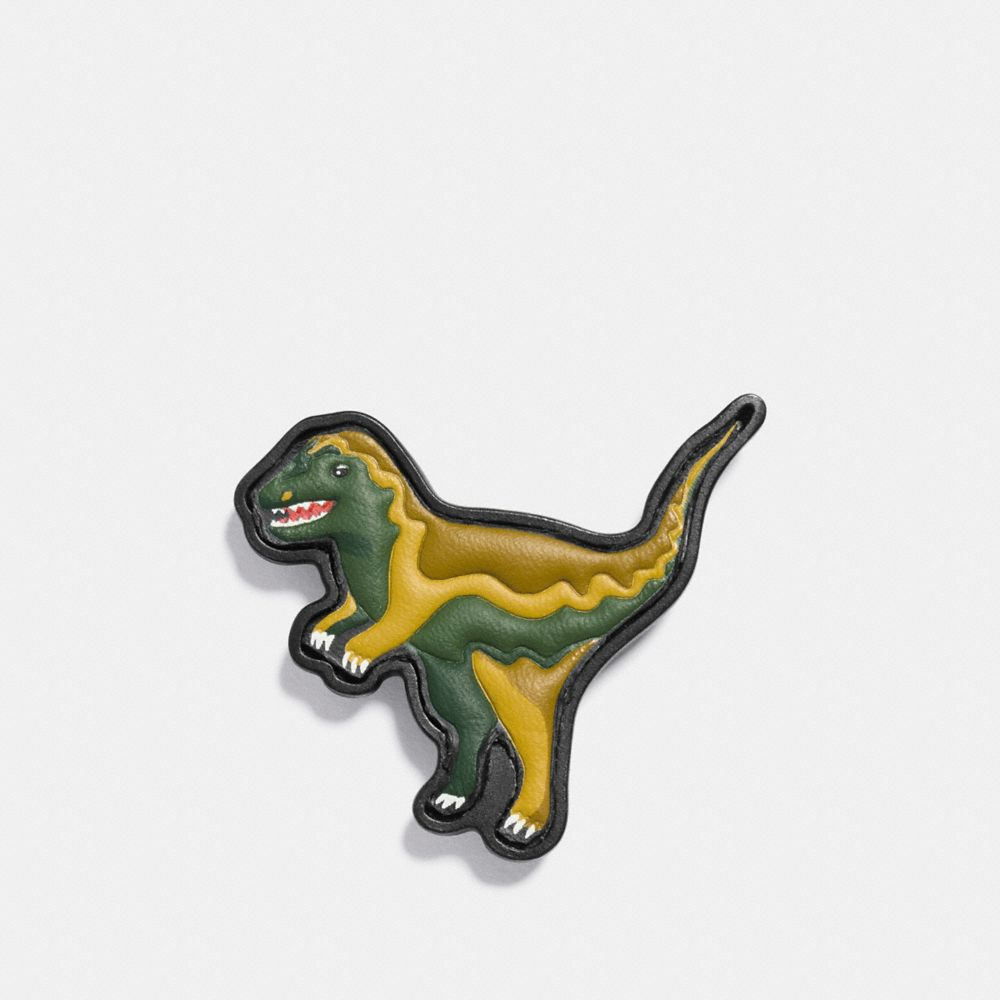Coach Paint by Numbers Rexy Pin