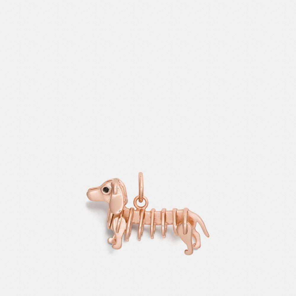 COACH DOG CHARM