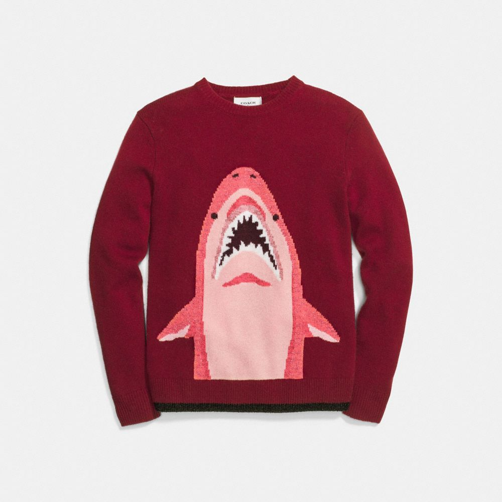 SHARKY INTARSIA SWEATER