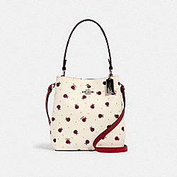 SMALL TOWN BUCKET BAG WITH LADYBUG PRINT - SV/CHALK/ RED MULTI - COACH 2801