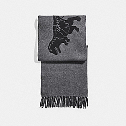 REXY AND CARRIAGE CASHMERE SCARF - CHARCOAL/BLACK - COACH 31793