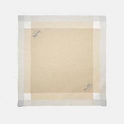 WINDOWPANE CHALLIS - STONE - COACH 54230