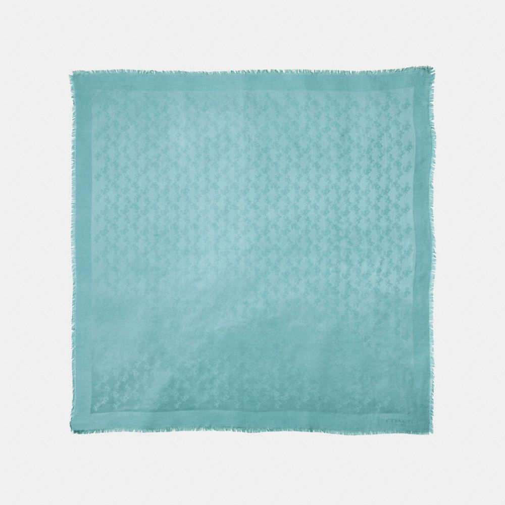 TONAL HORSE AND CARRIAGE OVERSIZED SQUARE
