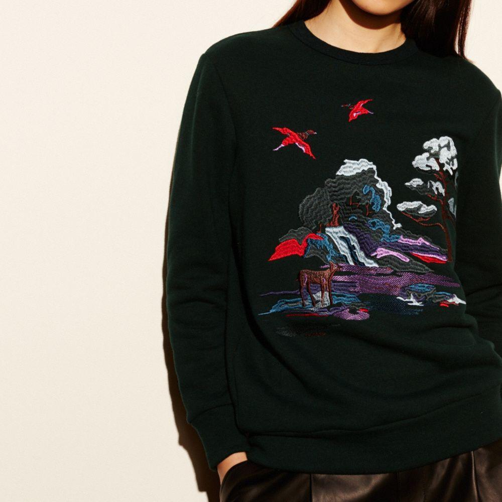 Embroidered Souvenir Sky Sweatshirt