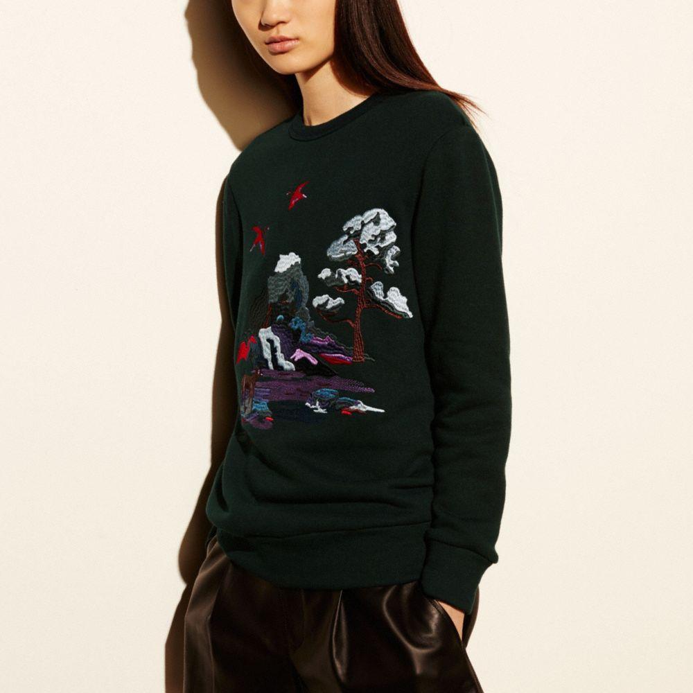 Embroidered Souvenir Sky Sweatshirt - Alternate View M
