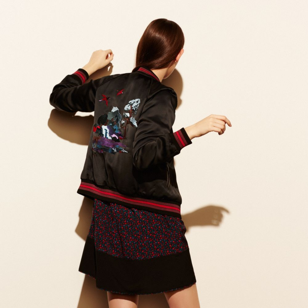 Souvenir Sky Varsity Jacket - Alternate View M