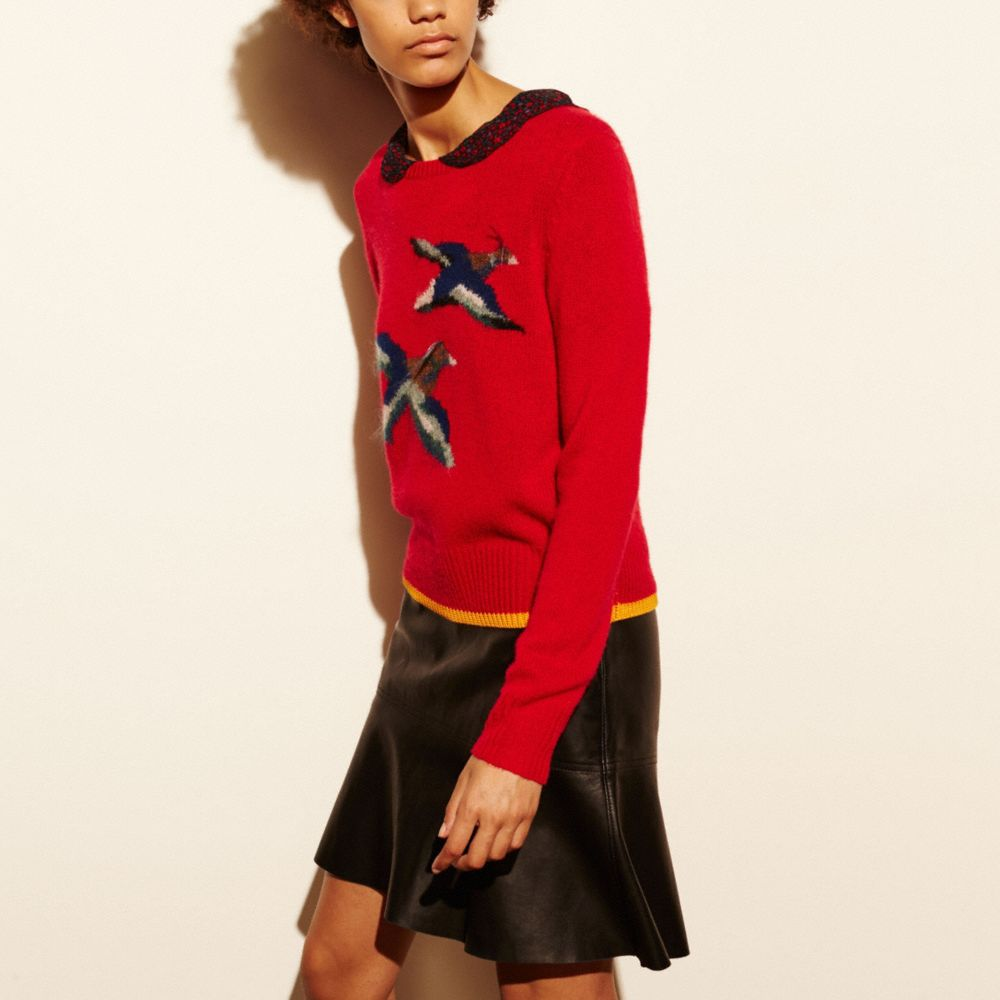 Coach Bird Intarsia Sweater