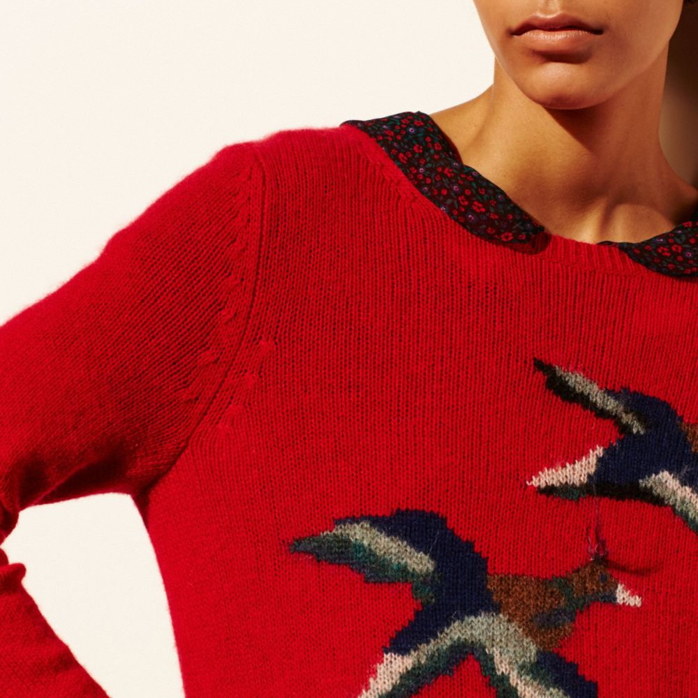 Bird Intarsia Sweater - Alternate View M3