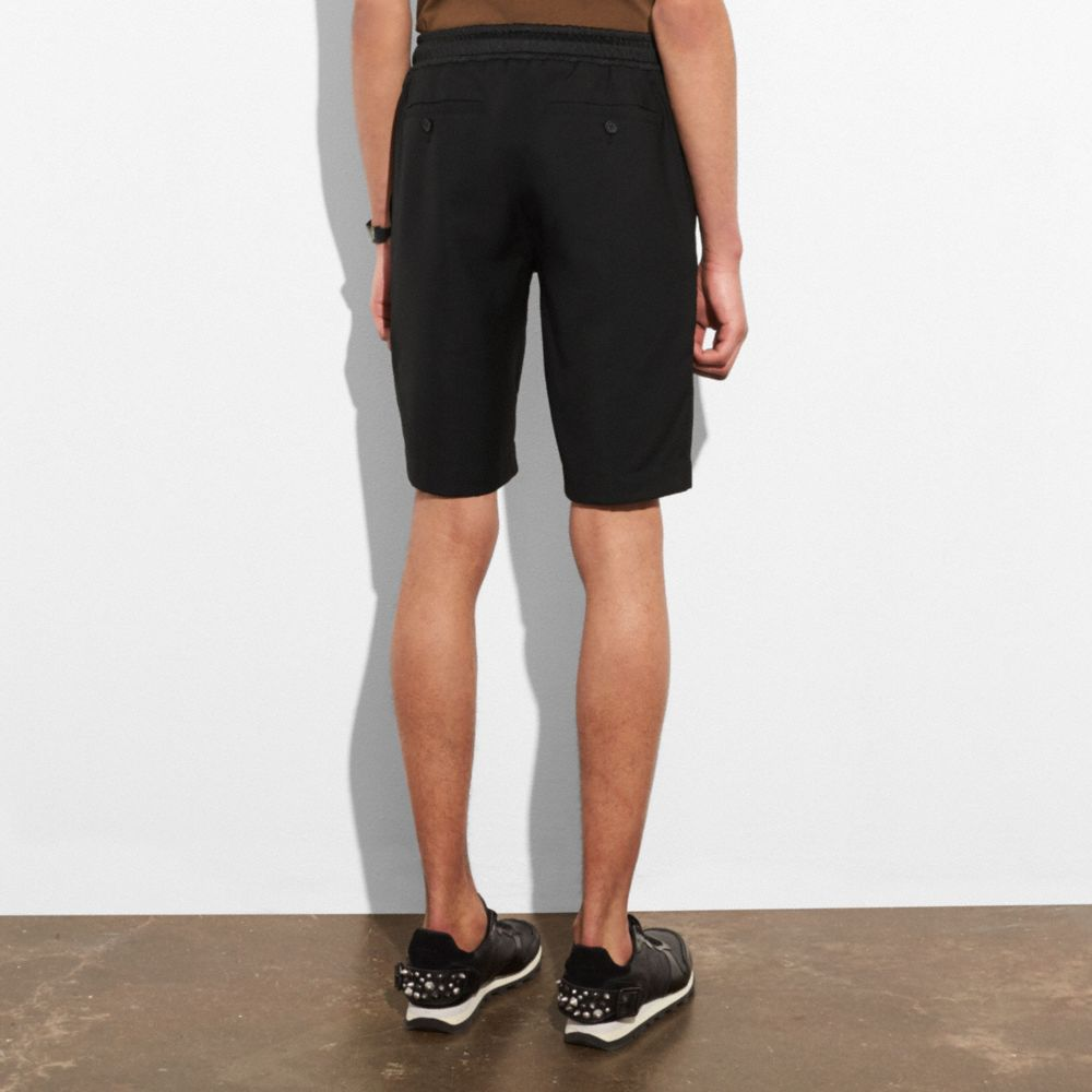 Shorts - Alternate View M