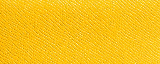 SILVER/YELLOW