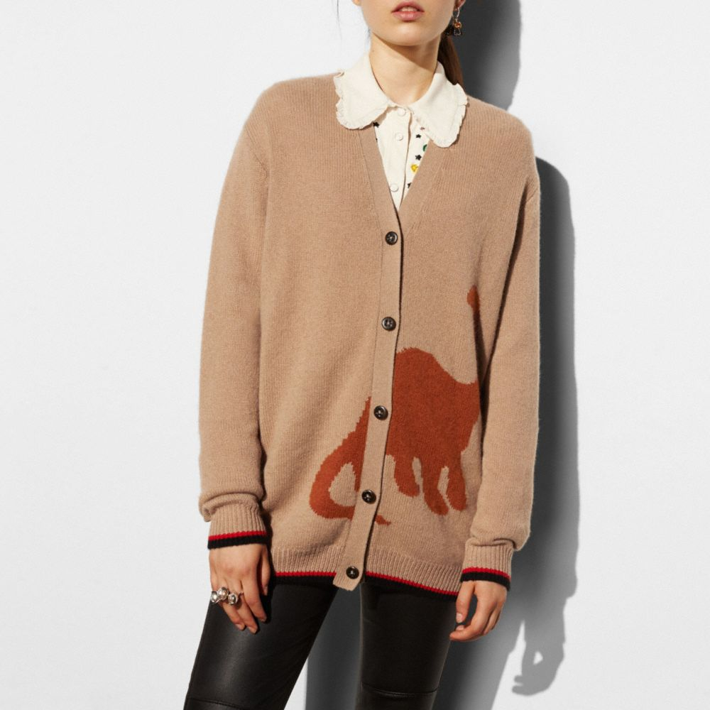 LONG SLEEVE CARDIGAN WITH DINO - Alternate View