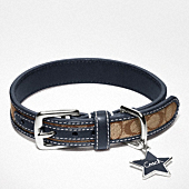 SIGNATURE COLLAR WITH STAR CHARM