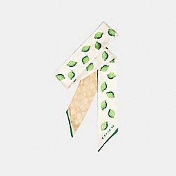 SIGNATURE LIME PRINT SILK SKINNY SCARF - CHALK/GREEN - COACH 669