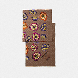 OBLONG SCARF WITH KAFFE FASSETT PRINT - TAN/ORANGE - COACH 78376