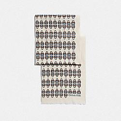 ARCHIVAL PRINT SILK OBLONG SCARF - CHALK - COACH 79643