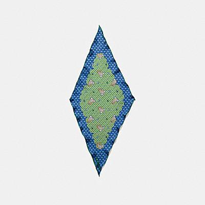 PIXEL PAISLEY印花絲巾