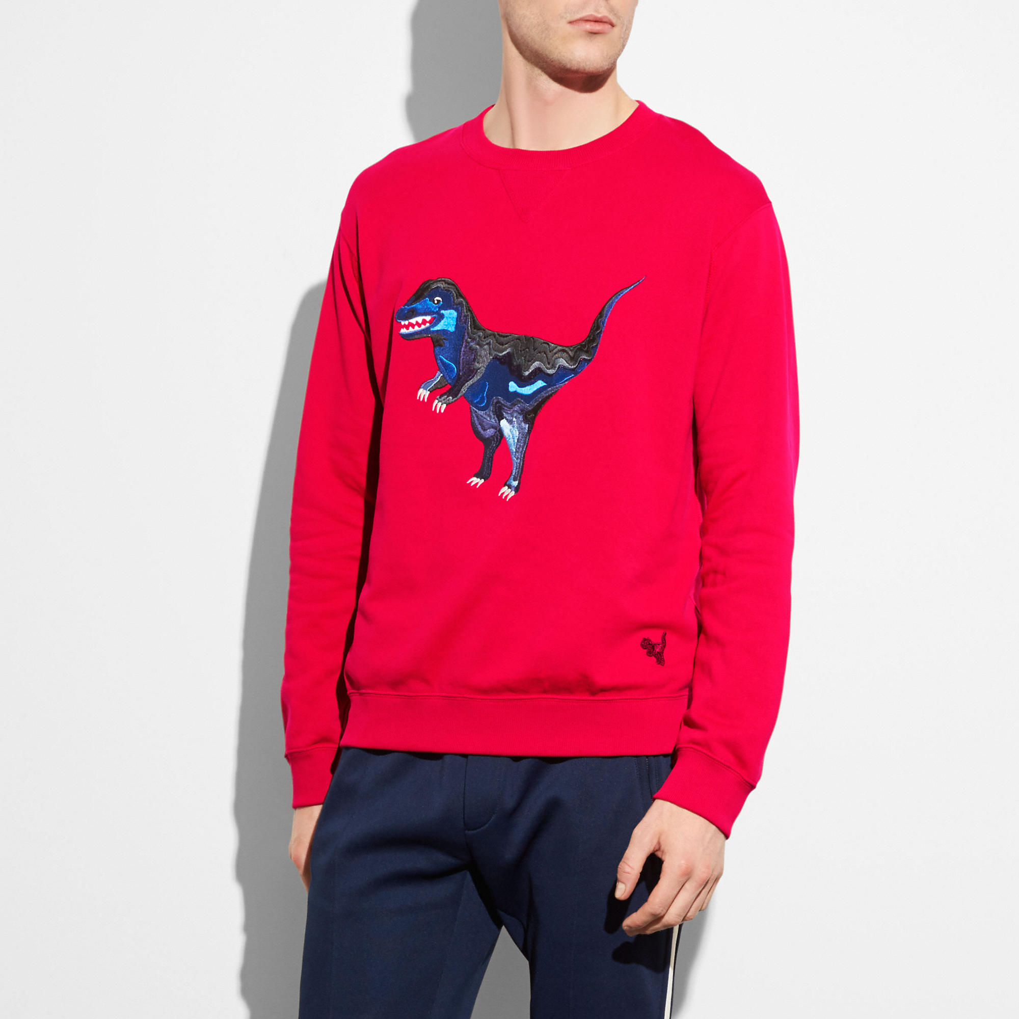Coach Embroidered Rexy Sweatshirt