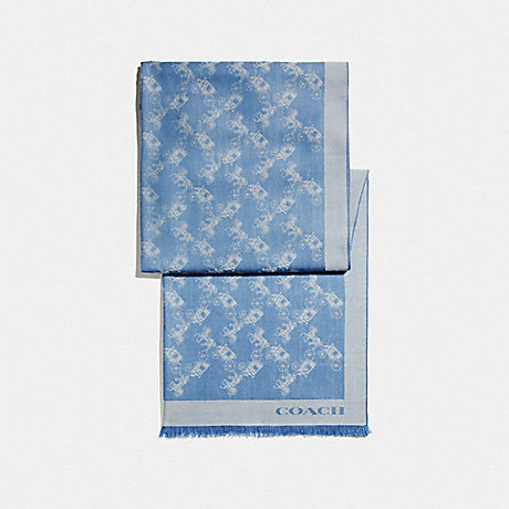 COACH BICOLOR HORSE AND CARRIAGE OBLONG SCARF - SKY BLUE - F26587