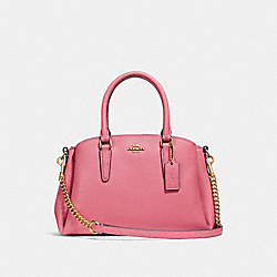 MINI SAGE CARRYALL - STRAWBERRY/IMITATION GOLD - COACH F28977