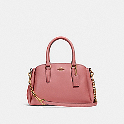MINI SAGE CARRYALL - VINTAGE PINK/IMITATION GOLD - COACH F28977