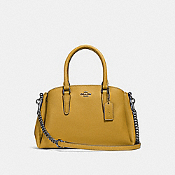 MINI SAGE CARRYALL - FLAX/BLACK ANTIQUE NICKEL - COACH F28977