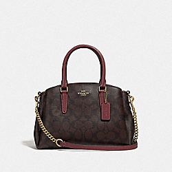 MINI SAGE CARRYALL IN SIGNATURE CANVAS - IM/BROWN/WINE - COACH F31985
