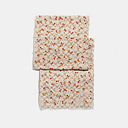 CHERRY PRINT SIGNATURE OBLONG - IVORY - COACH F32132