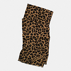LEOPARD OBLONG SCARF - NATURAL - COACH F54247