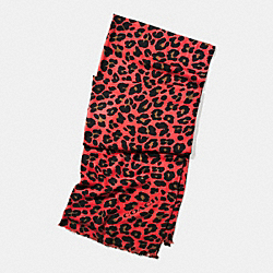 LEOPARD OBLONG SCARF - WATERMELON - COACH F54247