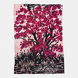 LANDSCAPE SHAWL - BLUSH - COACH F54265