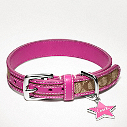 COACH SIGNATURE COLLAR WITH STAR CHARM - SILVER/KHAKI/PINK - F61354