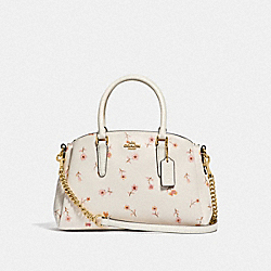 MINI SAGE CARRYALL WITH VINTAGE PRAIRIE PRINT - CHALK MULTI/IMITATION GOLD - COACH F66922