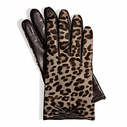 COACH OCELOT HAIRCALF BOW GLOVE - ONE COLOR - F83874
