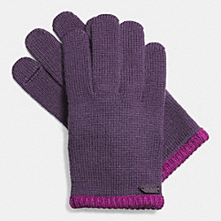 COLORBLOCK KNIT GLOVE - IRIS - COACH F85123