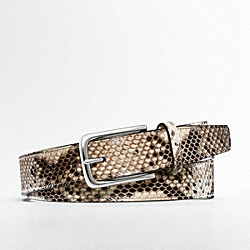 COACH EXOTIC BELT - ONE COLOR - F90221