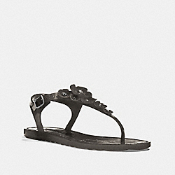 TEA ROSE JELLY SANDAL - BLACK - COACH FG2071
