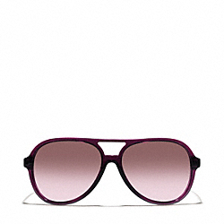 COACH DAISY SUNGLASSES - ONE COLOR - L064